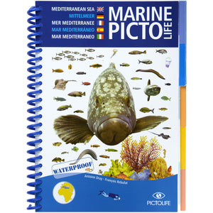 Marine Pictolife Fish ID Guide Book of the Mediterranean
