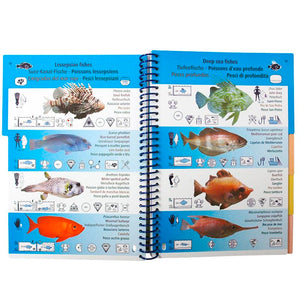 Marine Pictolife Fish ID Guide Book of the Mediterranean | Inside