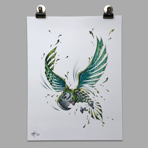 "Fine Art Print ""Green Parrot Slice"""
