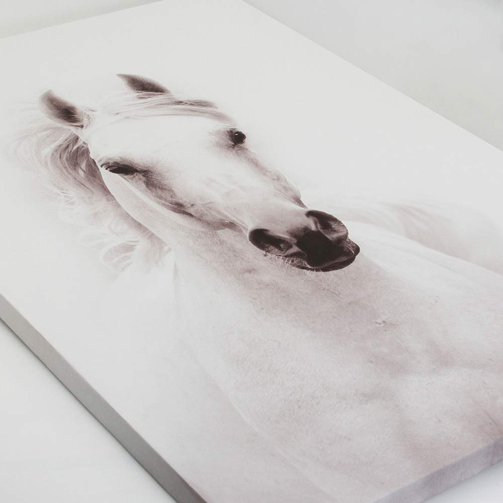 Black And White Horse Canvas Wall Art