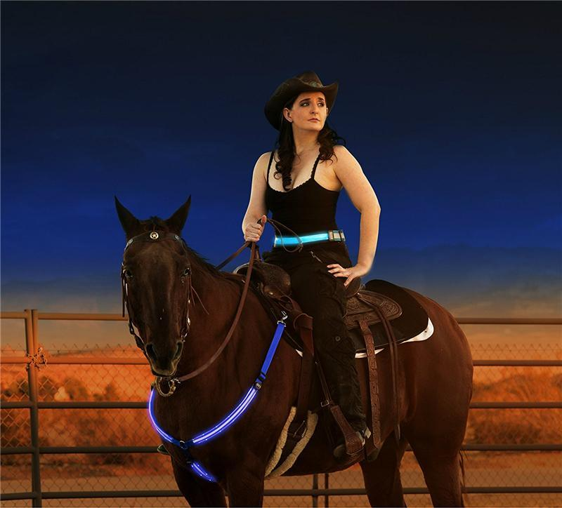USB Rechargeable LED Horse Harness