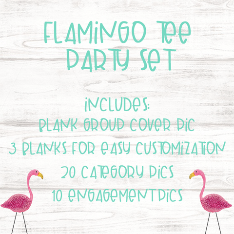 Flamingo T-shirt Party Graphic Package