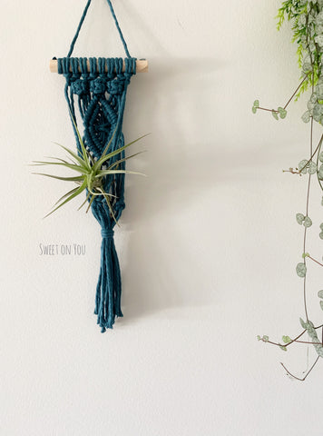 MINI MACRAME AIR PLANT HANGER