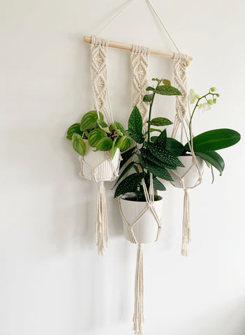 TRIO WALL POT HANGER