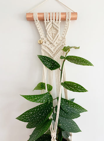 COPPER WALL POT HANGER