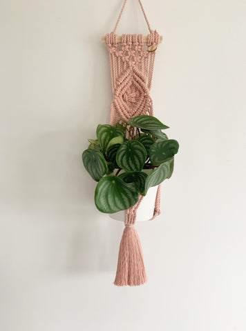 BLUSH WALL POT HANGER