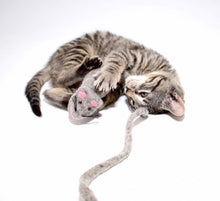 Load image into Gallery viewer, Julius Cheeser- Handmade Interactive Wool Mouse Cat and Kitten Toy
