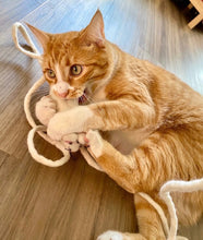 Load image into Gallery viewer, CleoRATra-Handmade Interactive Wool Mouse Cat Toy