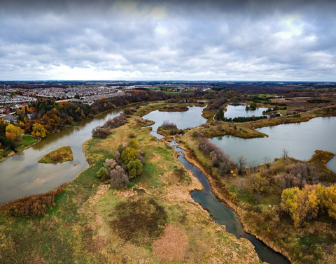 Snyder's Flats Conservation Area - Dog Park in Kitchener/Waterloo