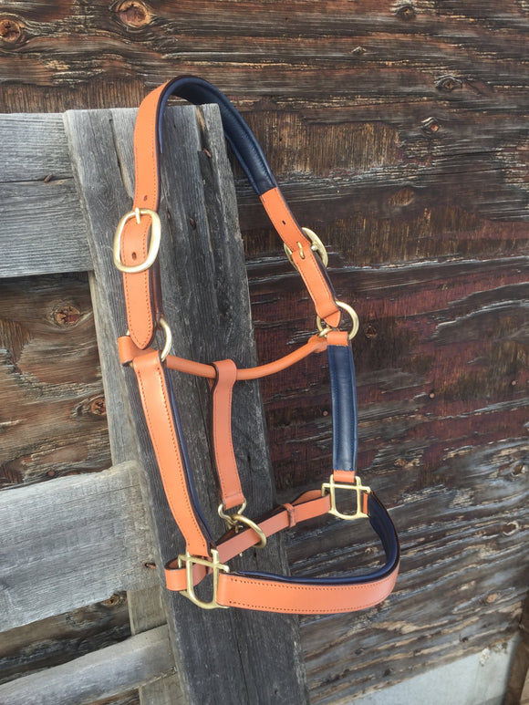 Light Brown Leather Halter with Padding