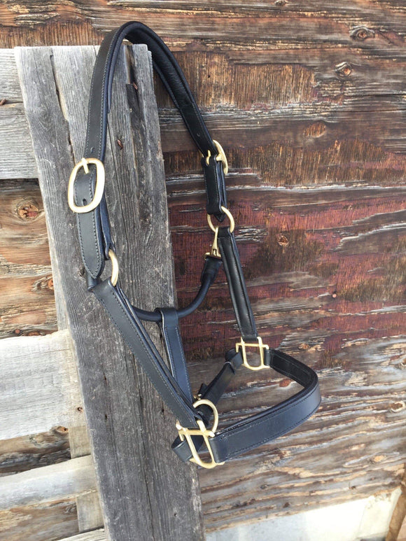 Black Leather Halter