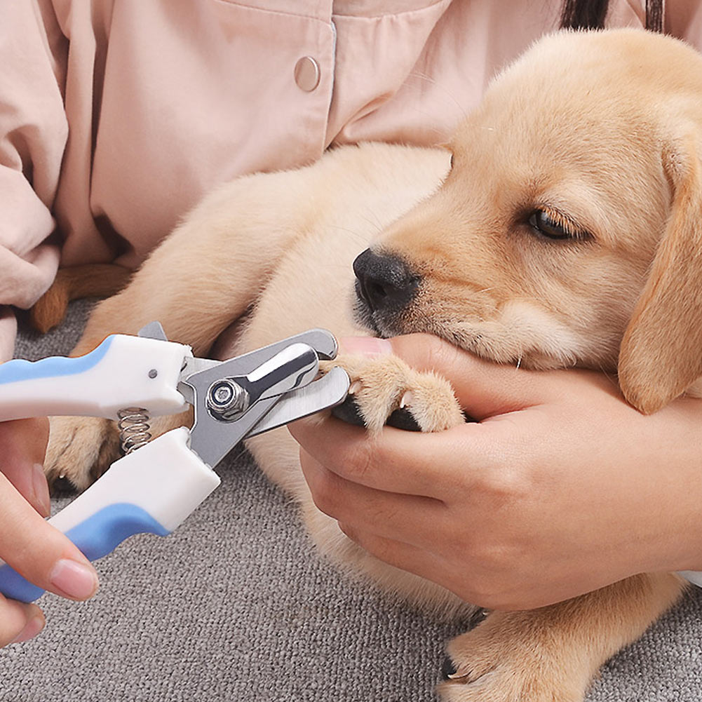 Stainless Steel Claw Nail Clippers Cutter For Puppies | AtomTray