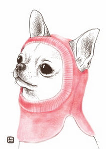 dog postcard, Chihuahua postcard