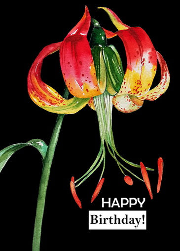 Lily flower postcard, Lily greeting postcard, Lily birthday postcard