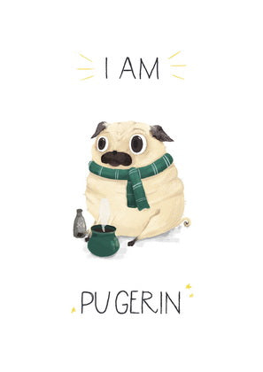 Harry Potter card, Hogwarts card, pug card, Slytherin card