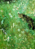 "Postcard ""Cat in the Summer Meadow"""