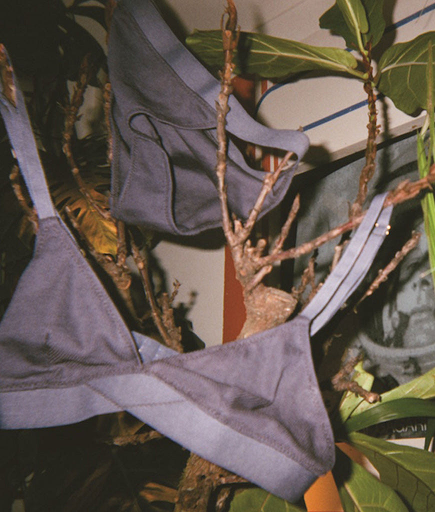 Bluish gray triangle bra with elastic band and matching panty hung on a plant's branches.