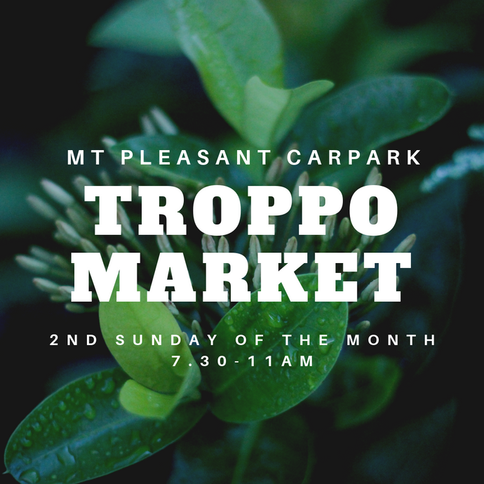 Troppo Market - 2nd Sunday of the Month