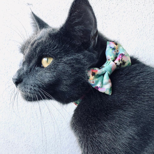 Minty Bouquet - Cat / Puppy Collar