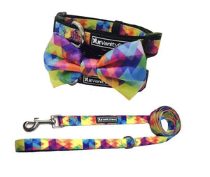 Abstract Rainbow - Dog Collar / Matching Lead