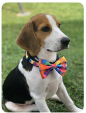 Load image into Gallery viewer, Abstract Rainbow - Dog Collar / Matching Lead