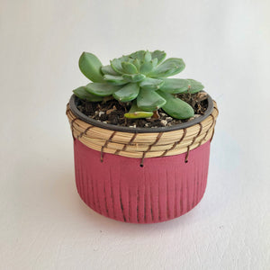 Raspberry pot holder