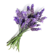 Load image into Gallery viewer, Lavender essential oil cellular regeneration, re-energised, healthier, uplifted appearance,  repair your complexion. Whether it's blemishes, acne scars, pigmentation or even cellulite, antibacterial elements, effectively purify your complexion. Working deep within your pores, Lavandin Essential Oil can rid your epidermis of harmful impurities that can cause breakouts and other skin problems, leaving skin healthier than ever.