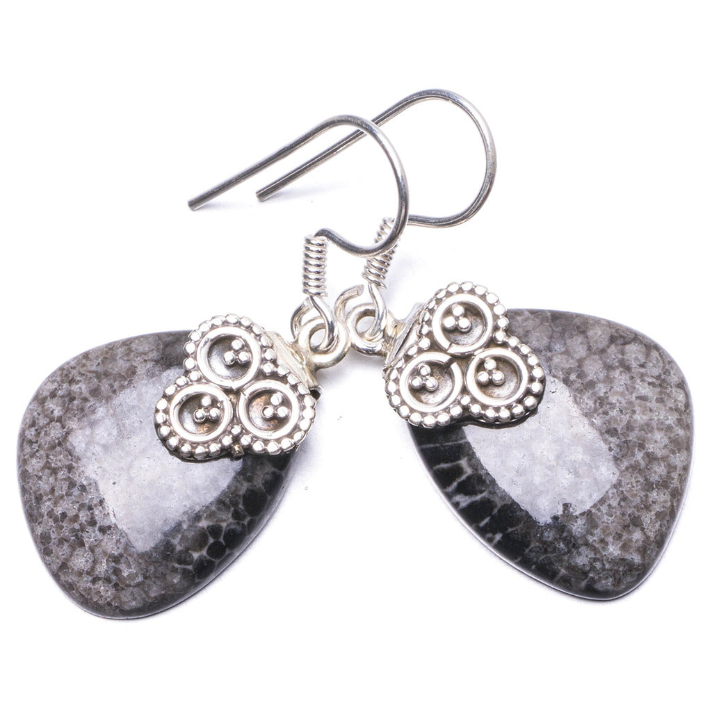 Natural Turritella   Handmade Unique 925 Sterling Silver Earrings 1.5