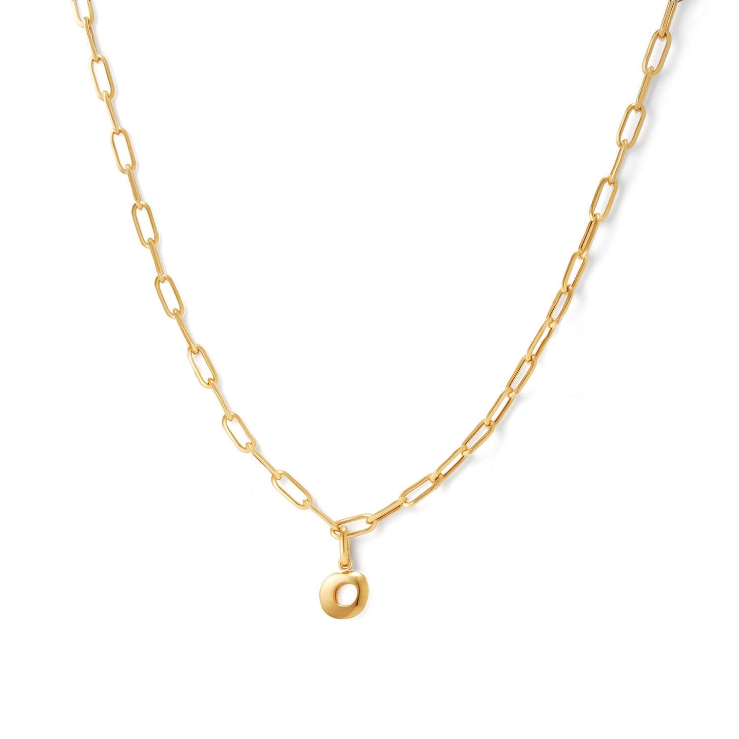 Gold Long Curator Necklace with Charm