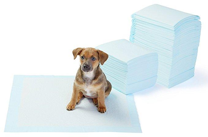 Dog Pee Pads and Puppy Training Potty Pads