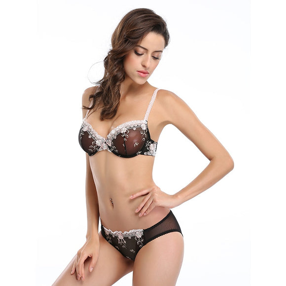 Girl's Sexy Lace Bra Set Women's Everyday Bra Brief Sets Sexy Embroidery Floral Lace Sheer Underwear Lingerie Plus Size C D Cup