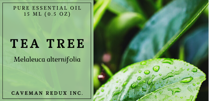 Tea tree essential oil sri lanka