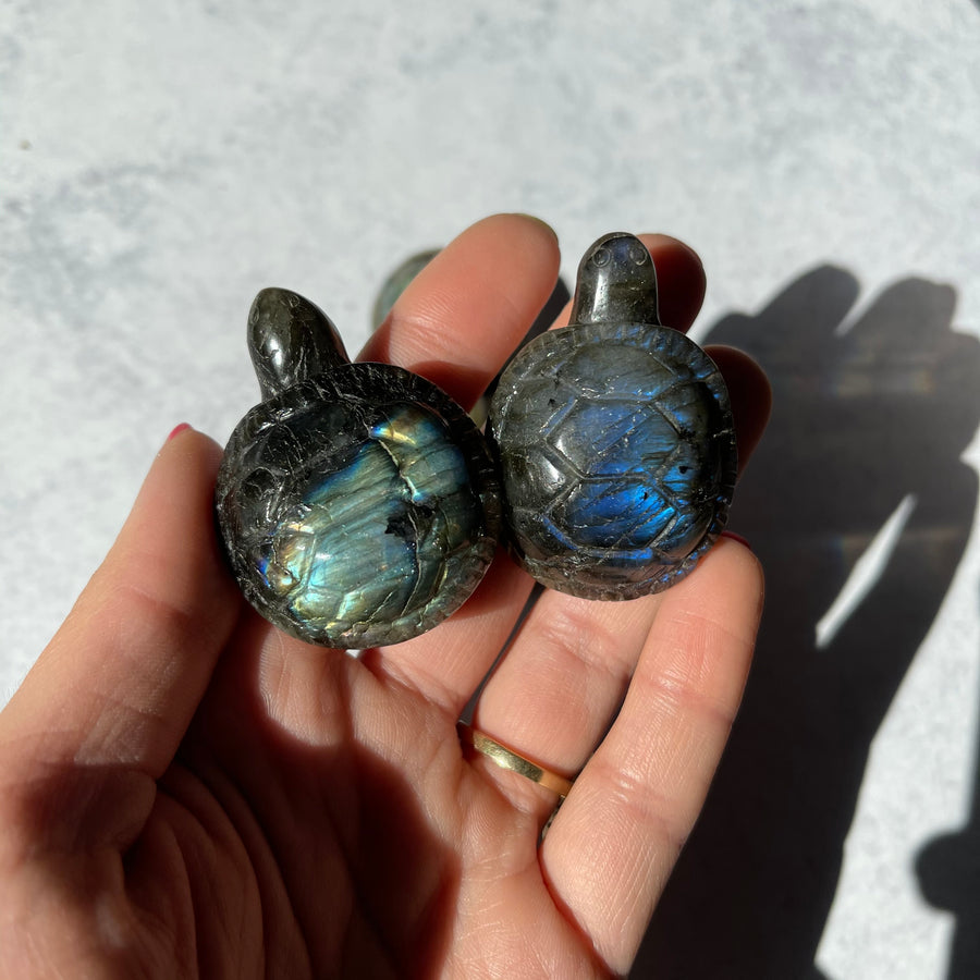Mini Labradorite Turtle