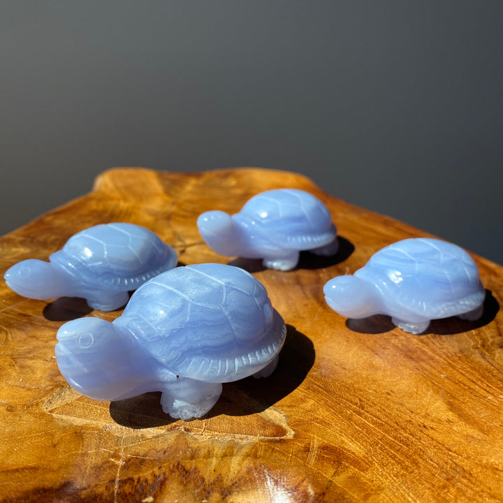 Blue Lace Agate Turtle