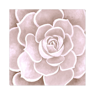 Blush Succulent Canvas Artwork