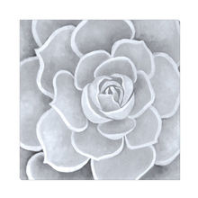 Load image into Gallery viewer, Grey Succulent Canvas Artwork