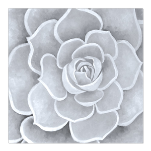 Light Grey Succulent Canvas Artwork