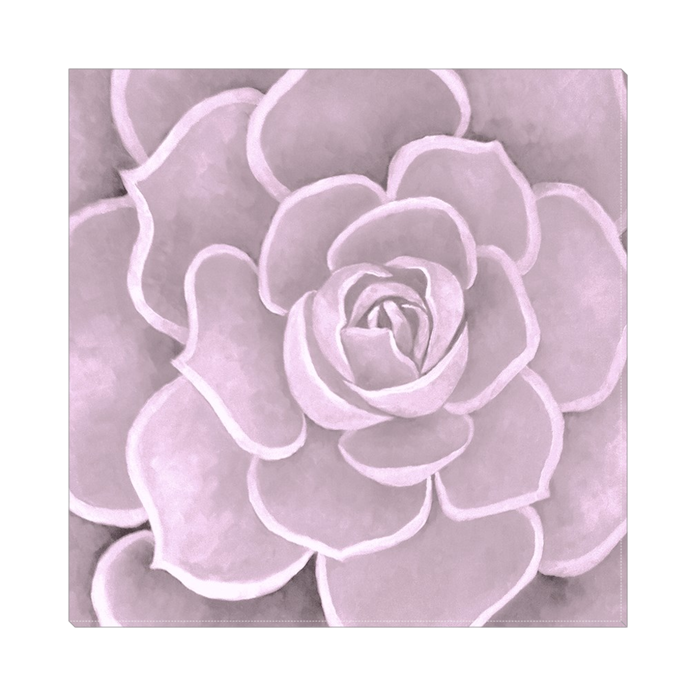 Pink Succulent Canvas Artwork