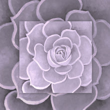 Load image into Gallery viewer, Lilac Succulent Canvas Artwork
