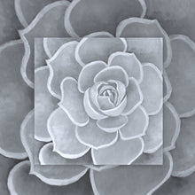 Load image into Gallery viewer, Light Grey Succulent Canvas Artwork