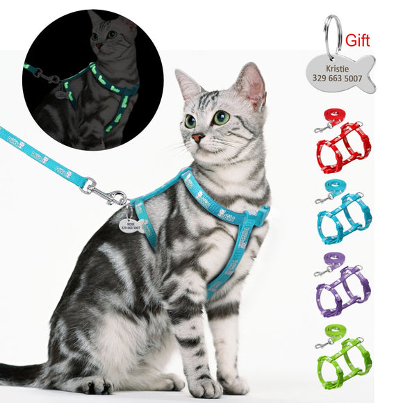 Customizable ID Tag, Reflective Glowing Harness & Leash - KittyCatPurrfect