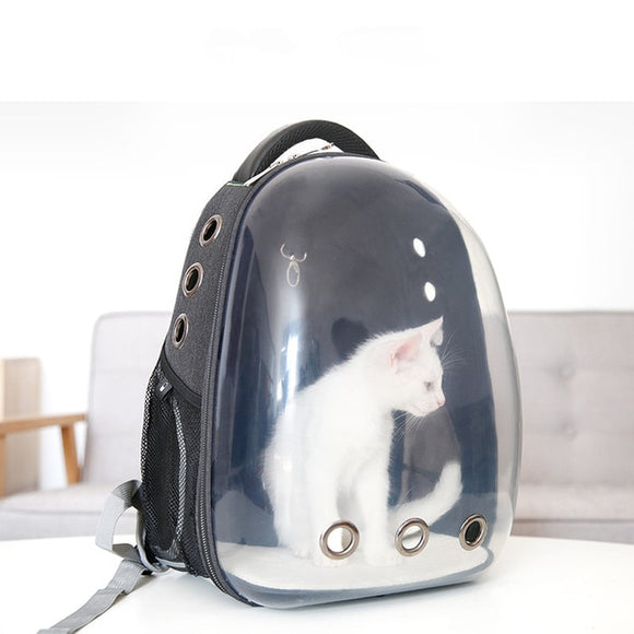 Transparent Backpack Carrier - KittyCatPurrfect