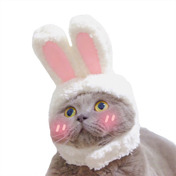 Bunny Ears Headwear - KittyCatPurrfect
