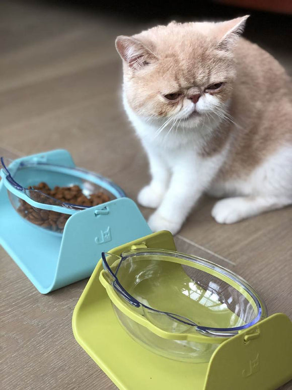 Adjustable Feeder Bowl - KittyCatPurrfect