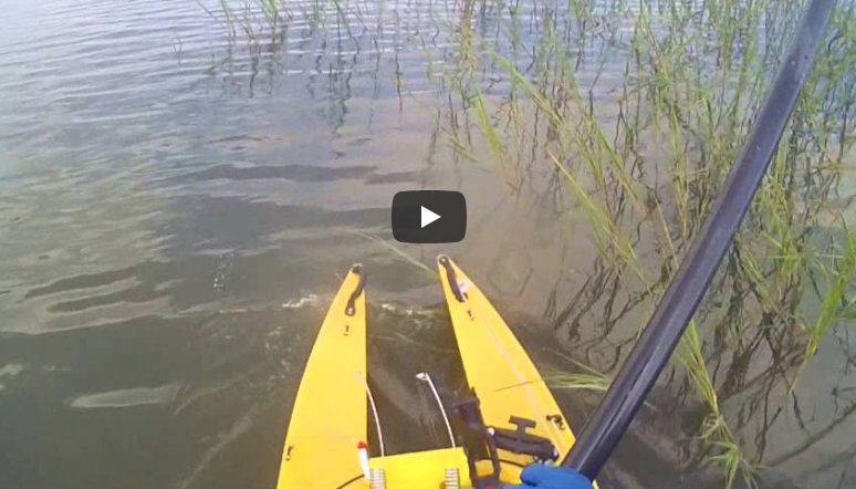 WaveWalk W500 Kayak - Standing