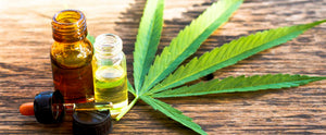 CBD as a natural remedy to everyone