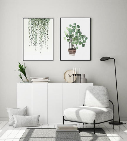 String Of Pearls And Pilea Peperomioides, Set Of 2
