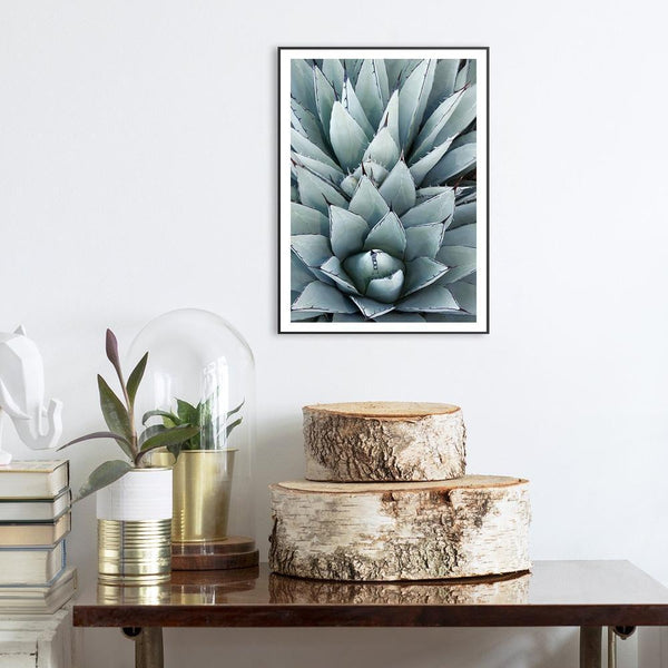 Wall-Art-Poster-Canvas-Framed-Agave Cactus-Gioia Wall Art