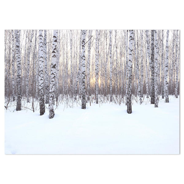 Wall-Art-Poster-Canvas-Framed-Birch Grove in winter at sunset-Gioia Wall Art