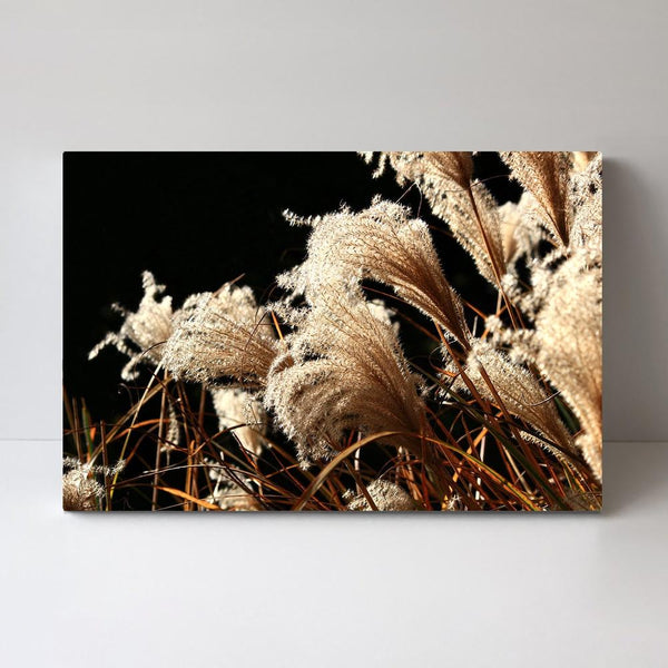 Wall-Art-Poster-Canvas-Framed-Bold Dried Stems-Gioia Wall Art